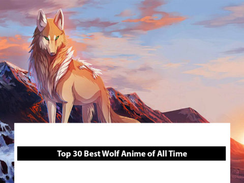 Top 30 Best Wolf Anime Of All Time